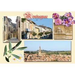 Carte postale Montagnac 35
