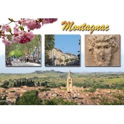 Carte postale Montagnac 54