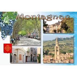 Carte postale Montagnac 71