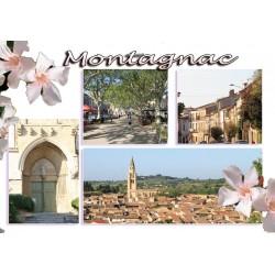 Carte postale Montagnac 73