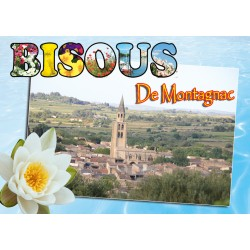 Magnet Montagnac 291
