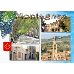 Magnet Montagnac 71
