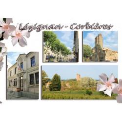 Carte postale Lézignan 73