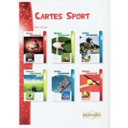 Lot cartes sport assorties