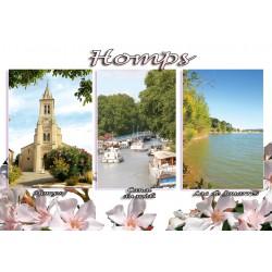 Homps 72